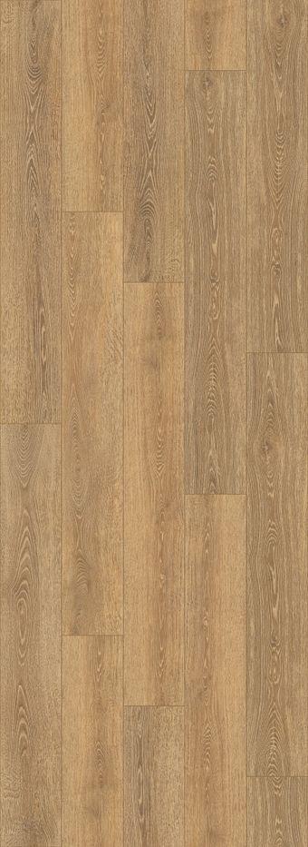 domain 012ct - tampa oak