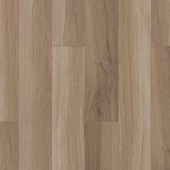 paladin plus 0278v - almond oak