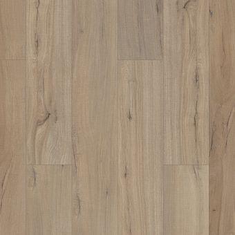 paladin plus 0278v - driftwood