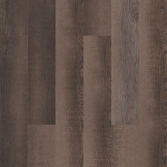 paragon 5in plus 1019v - blackfill oak