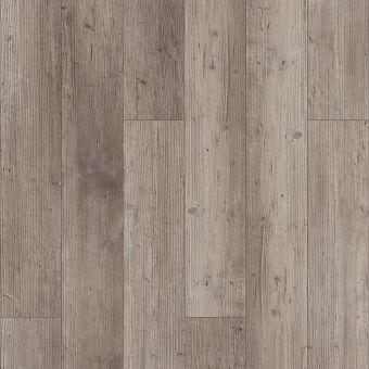 paragon 5in plus 1019v - distinct pine