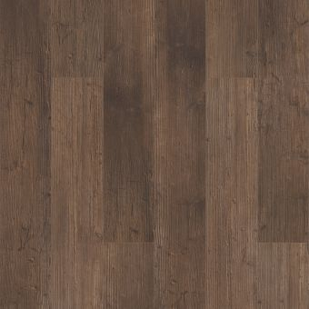 paragon 5in plus 1019v - tactile pine