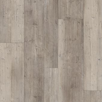paragon mix plus 1021v - distinct pine