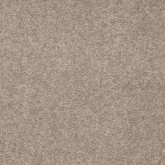ultimate expression 12 19698 - chinchilla