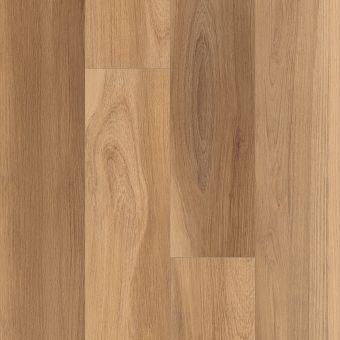 intrepid hd plus 2024v - khaki oak