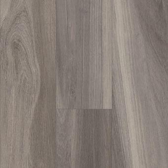 intrepid hd plus 2024v - charred oak