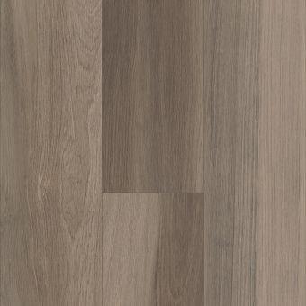 intrepid hd plus 2024v - chestnut oak