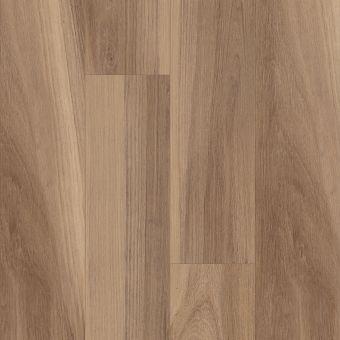 intrepid hd plus 2024v - buff oak