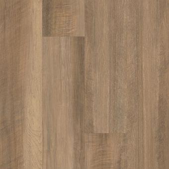 paramount 512c plus 509sa - tawny oak
