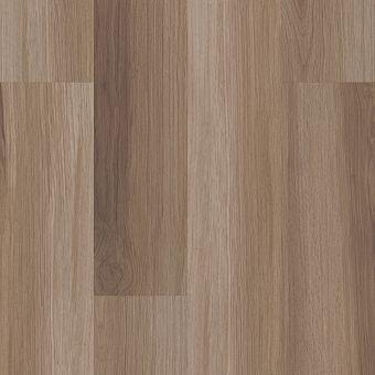 paramount 512c plus 509sa - hazel oak
