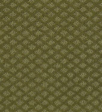 padova 52v37 - organic leaf