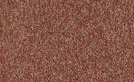 FRANCHISE-II-28-54744-RAISINBERRY-00820-main-image