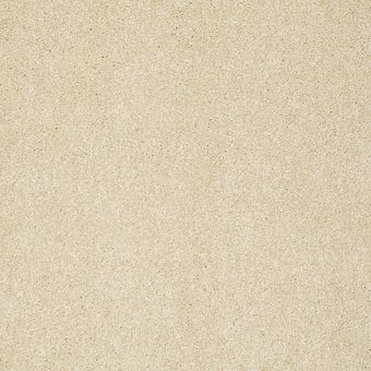 take the floor texture i 5e005 - restoration