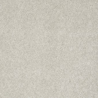take the floor texture i 5e005 - lead the way