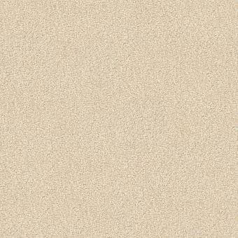 take the floor texture ii 5e006 - final straw