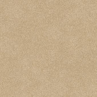 take the floor texture ii 5e006 - restoration