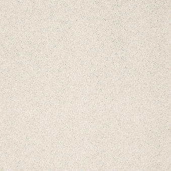take the floor texture ii 5e006 - biscotti