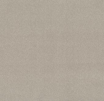take the floor texture ii 5e006 - pebble path