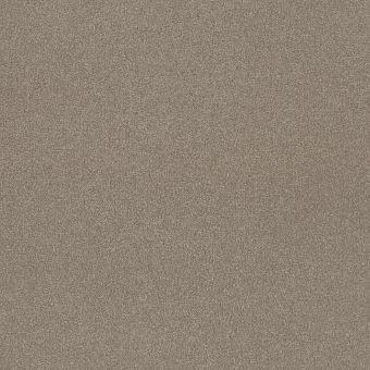 take the floor texture ii 5e006 - threshold