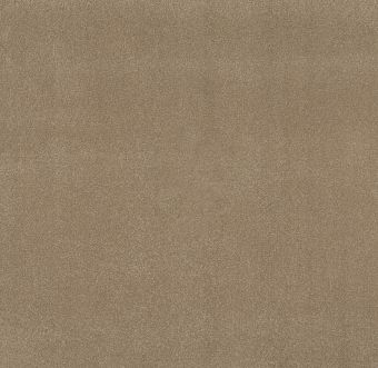 take the floor texture ii 5e006 - hazelnut