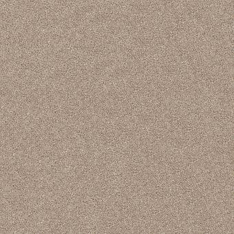 charmed hues 5e039 - biscotti