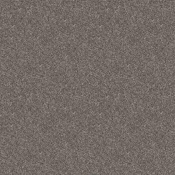 charmed hues 5e039 - warm onyx