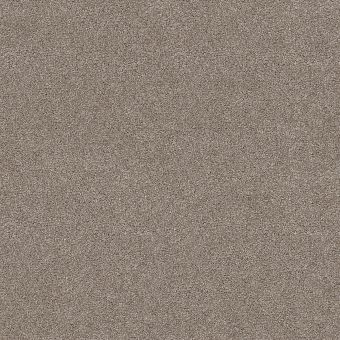charmed hues 5e039 - wild truffle