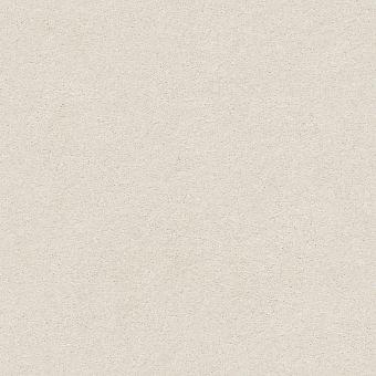 montage i 5e081 - painter s canvas