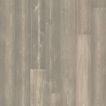 exquisite fh820 - twilight pine