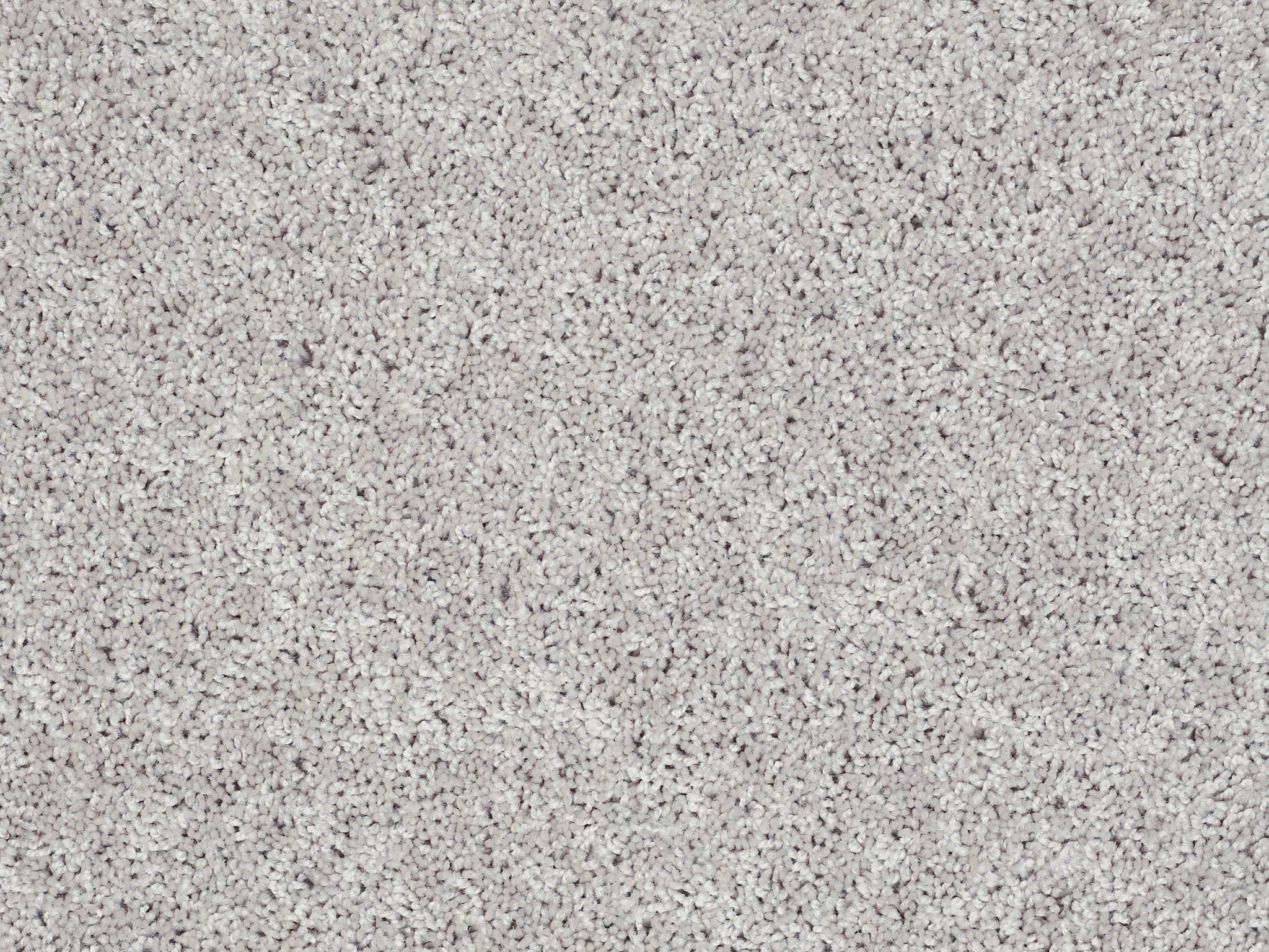 Bungalow (S) Carpet - Cool Taupe Zoomed Swatch Image