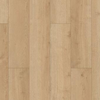 rarity hl448 - soft maple