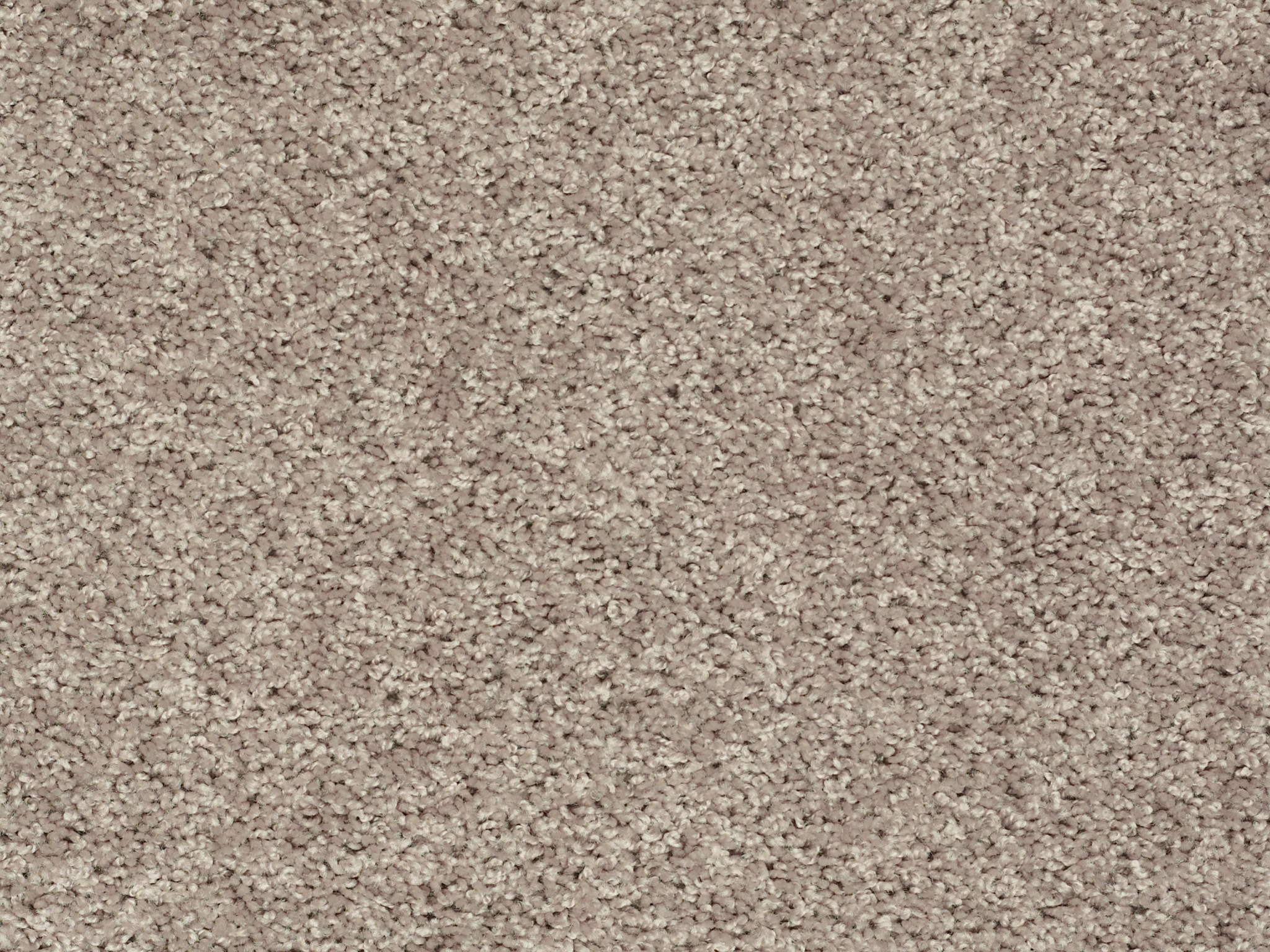 Venture Solid Carpet - Soft Taupe Zoomed Swatch Image