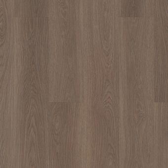cadence sl449 - ash brown