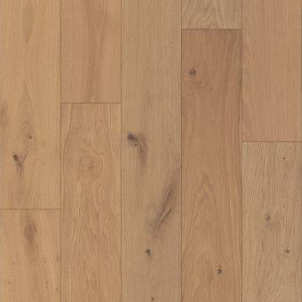 castlewood oak sw485 - dynasty